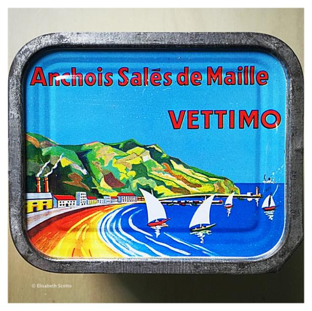 1.Vettimo