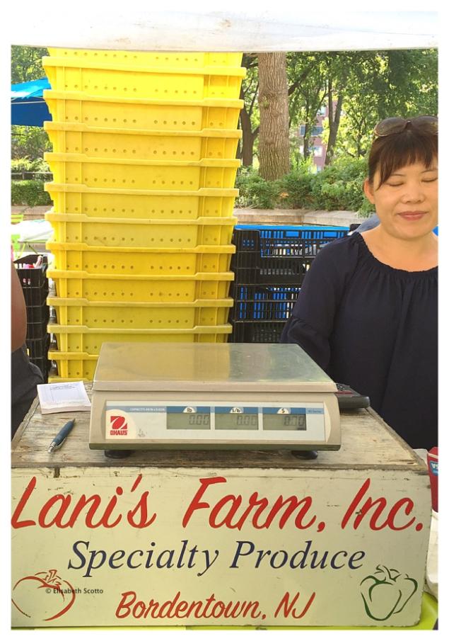Lani's Farm.jpg