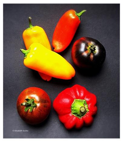 poivrons-tomates