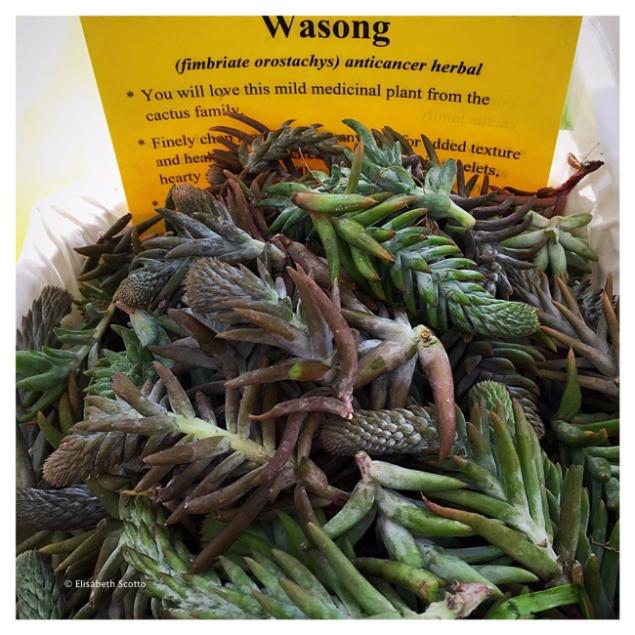 Wasong