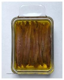 filets-a-lhuile-1