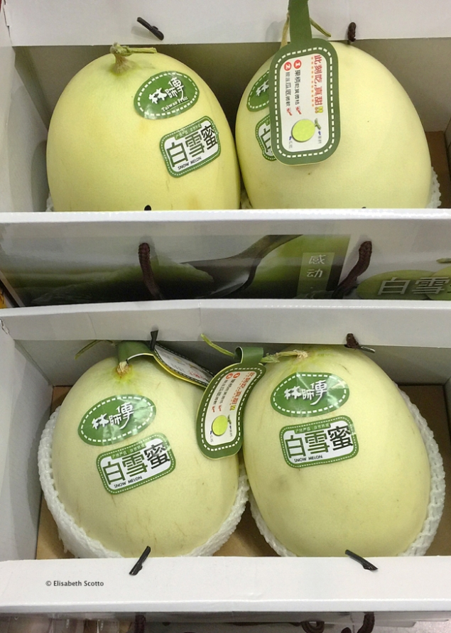 Fruits melon