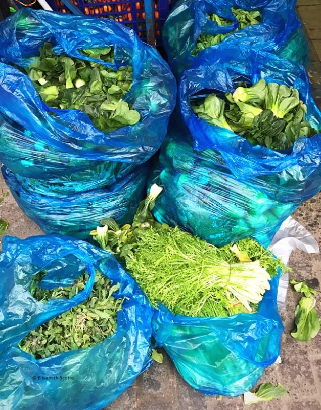 Légumes Verdures