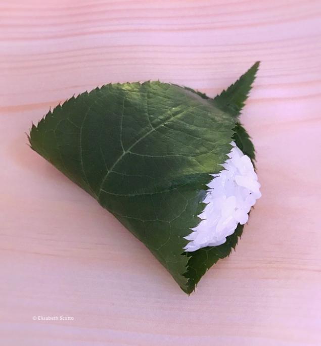 Oshinogi