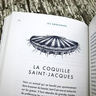 Saint-Jasques