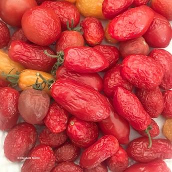 Tomates 2